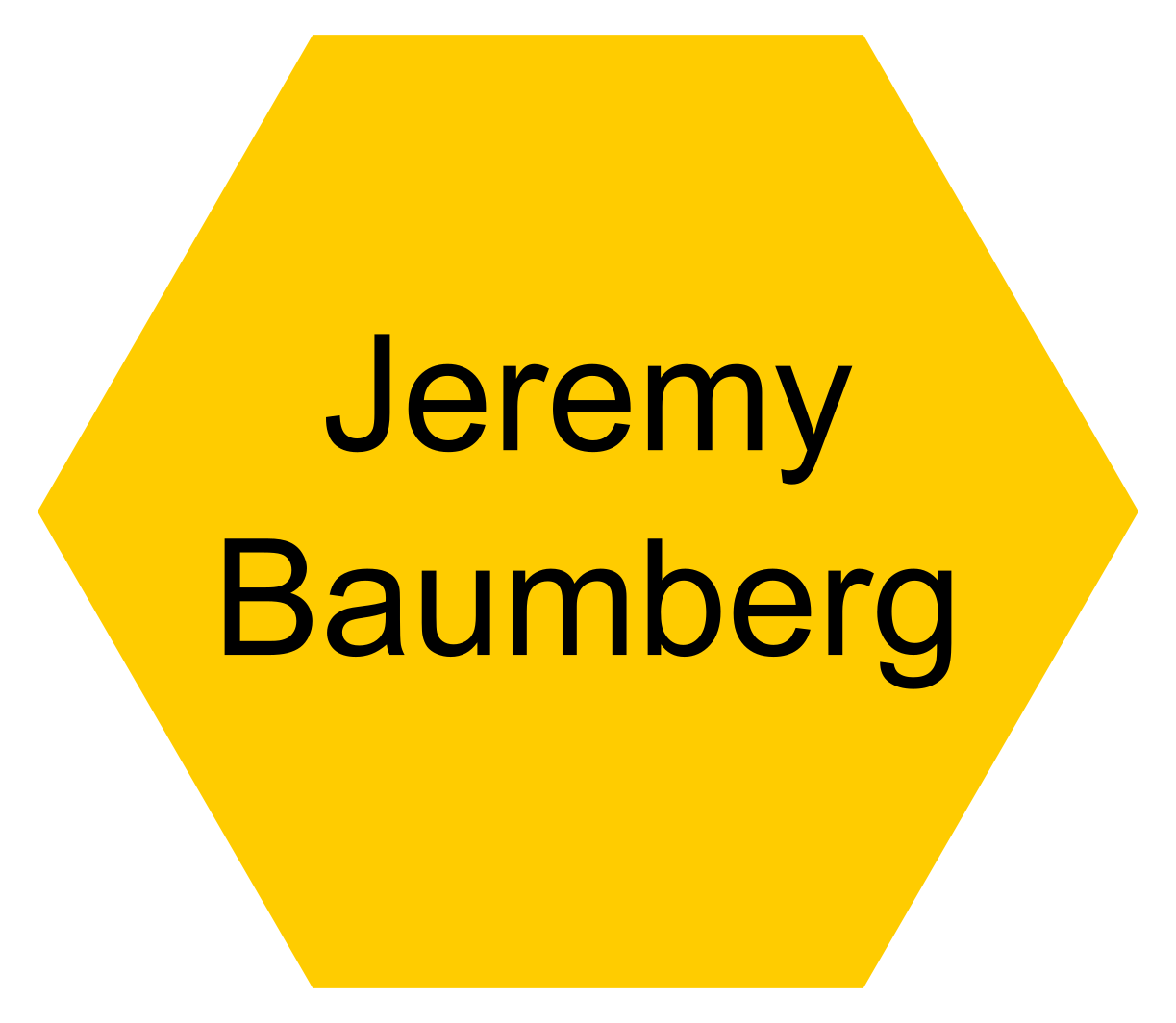 Prof. Jeremy Baumberg (University of Cambridge: Principal Investigator) - Click this icon to reveal their contact details.