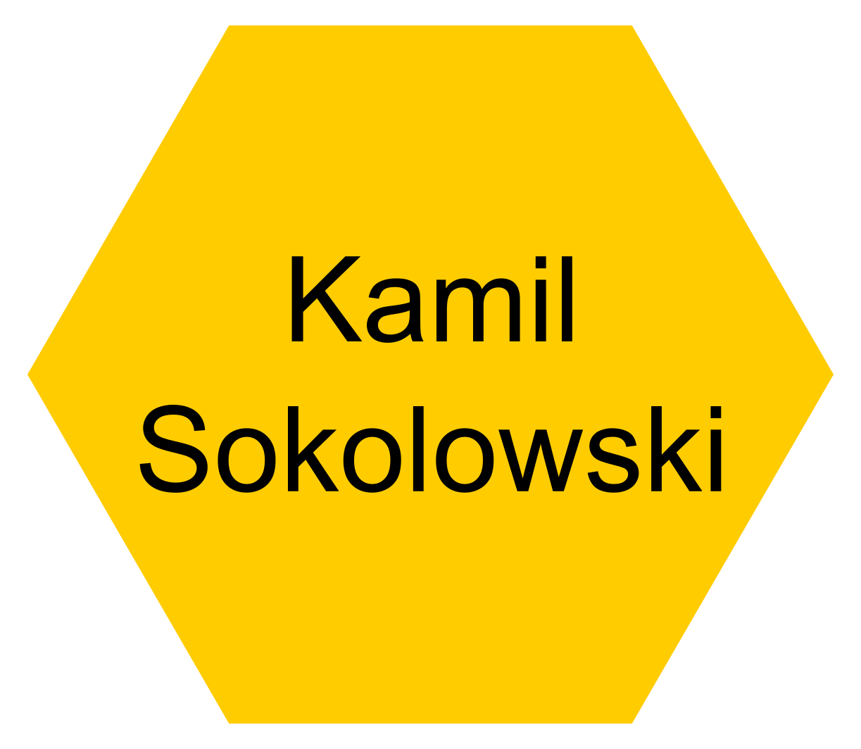 Dr. Kamil Sokolowski (University of Cambridge: Post-Doctoral Researcher) - Click this icon to reveal their contact details.